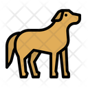 Dog Pet Mammal Icon