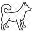 Chinese Dog Dog Hound Icon