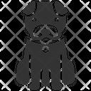 Dog Dog Training Hachi Icon