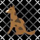 Pet Dog Icon