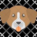 Dog Face Brown Icon