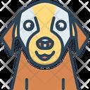 Pet Tame Domestic Icon