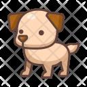 Dog Animal Wild Icon