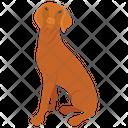 Dog Breeds Dog Species Dog Icon
