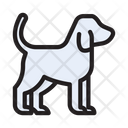 Dog Pet Puppy Icon