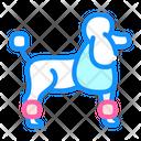 Dog Poodle Transportation Icon