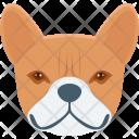 Dog Jungle Pet Icon