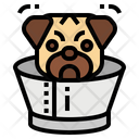Collar Dogs Pet Icon