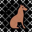 Dog Combing Icon