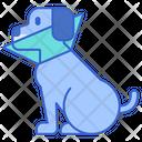 Dog Cone Icon