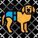 Dog Diaper Icon