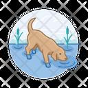 Dog Drinking Water Dog Drinking Dog Icon