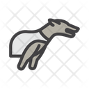 Dogbetting Dog Race Dog Racing Icon