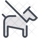 Dog Leash Leash Icon