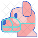 Dog Muzzle Icon