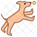Dog Park Icon