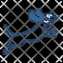 Dog C Icon