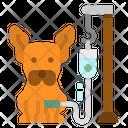 Dog Saline Icon