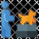 Dog Show Show Dog Icon
