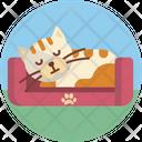 Sleeping Kitten Cat Icon