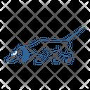 Dog D Icon
