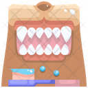 Dog Teeth Cleaning Icon