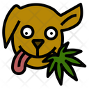 Dog Animal Treat Icon