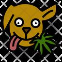 Dog Treat Marijuana Icon