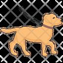 Dog Walking Walk Pet Icon