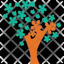 Generic Tree Dogwood Icon