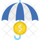 Dollar Funds Protection Insurance Icon