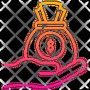 Dollar Bag Icon