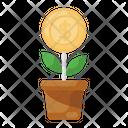 Dollar Plant Money Plant Money Growth Icon