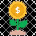 Dollar Plant Money Plant Money Investment Icon