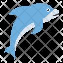 Dolphin Mammal Sea Icon
