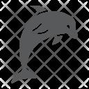 Dolphin Animal Aquatic Icon