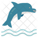 Dolphin Animal Aquarium Icon
