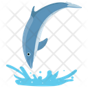 Diving Dolphin Jumping Cartoon Jumping Dolphin Icon