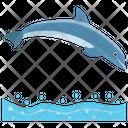 Dolphin Jumping Cartoon Jumping Dolphin Icon