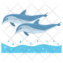 Dolphins Jumping Cartoon Jumping Dolphin Icon