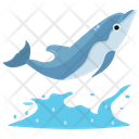 Dolphin Swimming Jumping Cartoon Jumping Dolphin Icon
