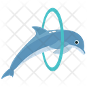 Dolphin Playing Dolphin Jumping Cartoon Icon