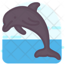 Dolphin Mammal Fish Sea Animal Icon
