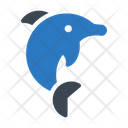 Dolphin Water Jumping Icon