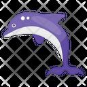 Dolphin Aquatic Animal Marine Animal Icon