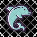 Dolphin Show Icon