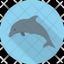Dolphin Sea Animal Icon