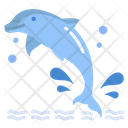 Dolphin Sea Animal Animal Icon