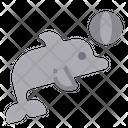 Dolphin Sea Mammals Icon
