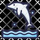 Dolphin Fish Sea Icon